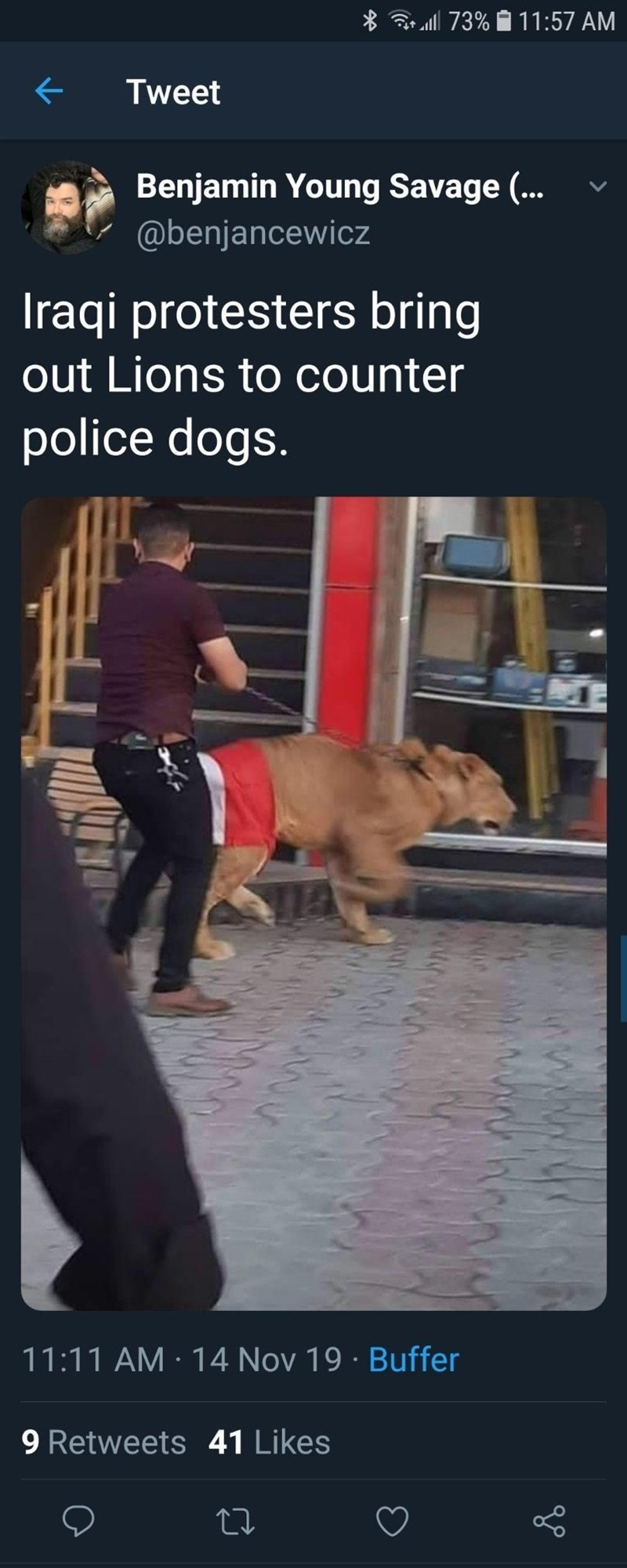 Mammal - 73% 11:57 AM Tweet Benjamin Young Savage (... @benjancewicz Iraqi protesters bring out Lions to counter police dogs. 11:11 AM 14 Nov 19 Buffer 9 Retweets 41 Likes rt