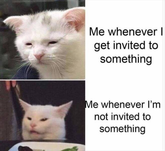 Cat - Me whenever I get invited to something Me whenever I'm not invited to something