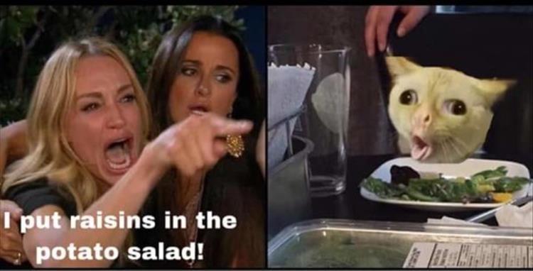 Cat - I put raisins in the potato salad!