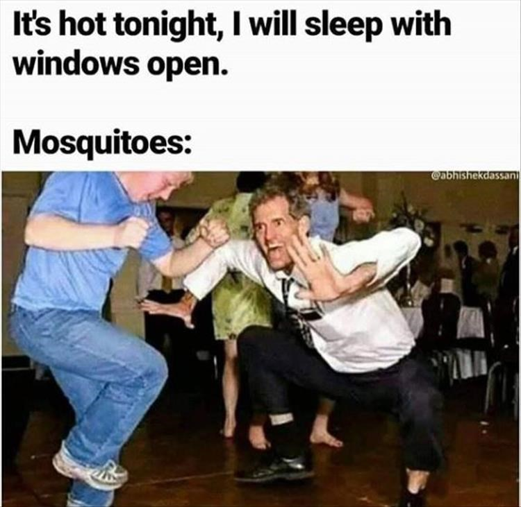 Photo caption - It's hot tonight, I will sleep with windows open. Mosquitoes: @abhishekdassan