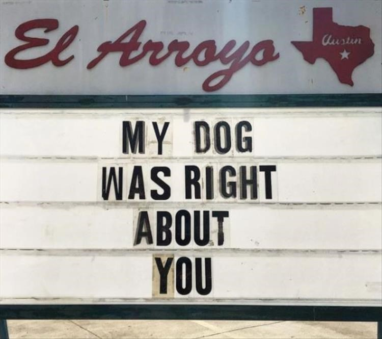 Font - El Arroya lustin MY DOG WAS RIGHT ABOUT YOU