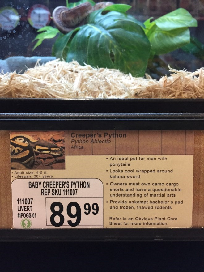 Plant - Creeper's Python Python Abiectio Africa An ideal pet for men with ponytails Looks cool wrapped around katana sword Adult size: 4-5 ft. Lifespan: 30+ years BABY CREEPER'S PYTHON REP SKU 111007 .Owners must own camo cargo shorts and have a questionable understanding of martial arts 111007 LIVERT #POGS-01 Provide unkempt bachelor's pad and frozen, thawed rodents 89.99 Refer to an Obvious Plant Care Sheet for more information.