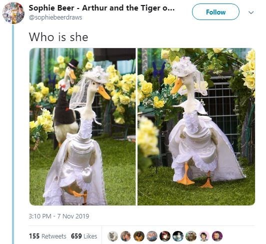White - Sophie Beer - Arthur and the Tiger o... @Sophiebeerdraws Follow Who is she 3:10 PM 7 Nov 2019 155 Retweets 659 Likes