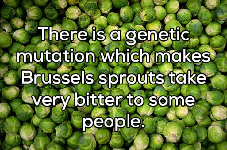 Natural foods - There is a genetic mutation which makes Brussels sprouts take very bitter to some people