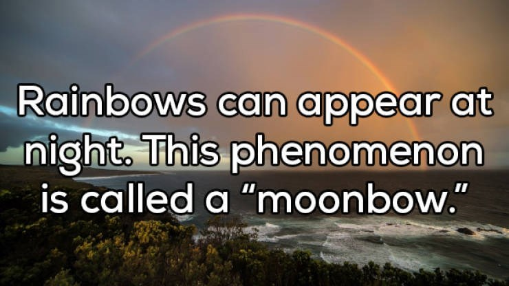 "Sky - Rainbows can appear at night. This phenomenon is called a ""moonbow."""