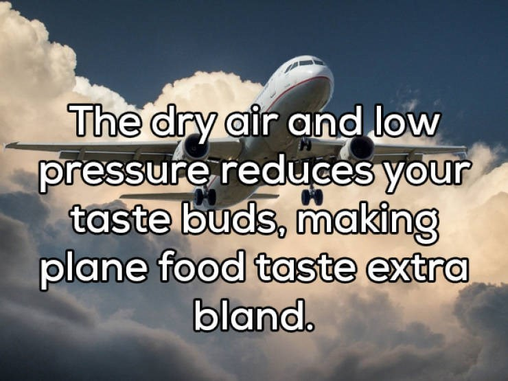 Sky - The dry air and low pressure reduces your taste buds, making plane food taste extra bland.