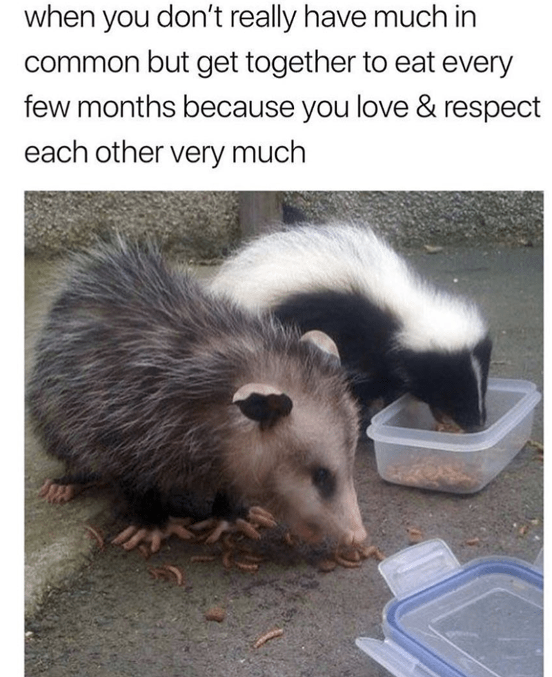 Mammal - when you don't really have much in common but get together to eat every few months because you love & respect each other very much