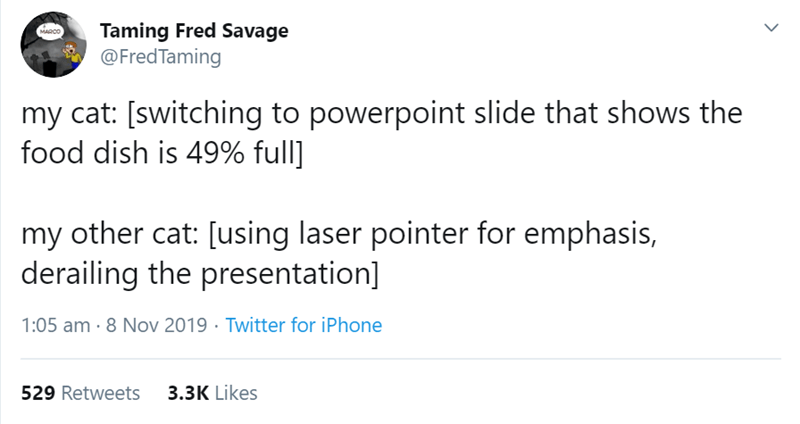 Text - Taming Fred Savage @FredTaming MARCO my cat: [switching to powerpoint slide that shows the food dish is 49% full] my other cat: [using laser pointer for emphasis, derailing the presentation] 1:05 am 8 Nov 2019 Twitter for iPhone 3.3K Likes 529 Retweets