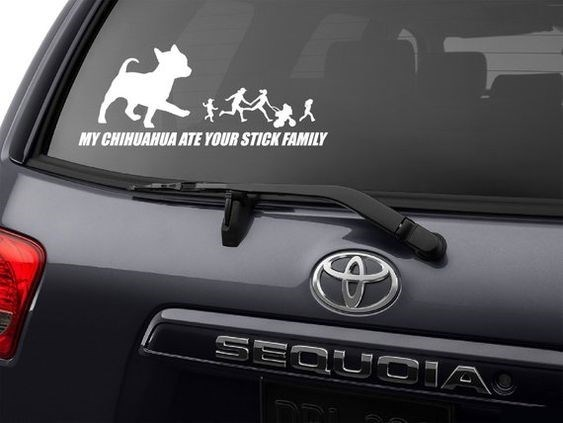 Motor vehicle - MY CHIHUAHUA ATE YOUR STICK FAMILY SECUCIA