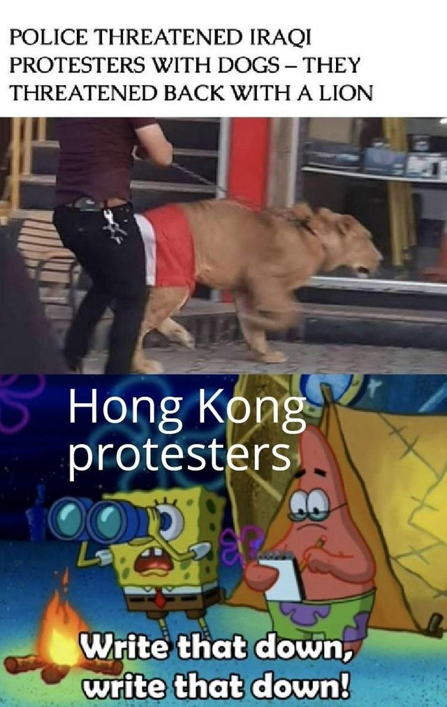 Photo caption - POLICE THREATENED IRAQI PROTESTERS WITH DOGS THEY - THREATENED BACK WITH A LION Hong Kong protesters Write that down, write that down!