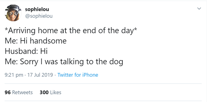 Text - sophielou @sophielou *Arriving home at the end of the day* Me: Hi handsome Husband: Hi Me: Sorry I was talking to the dog 9:21 pm 17 Jul 2019 Twitter for iPhone 300 Likes 96 Retweets