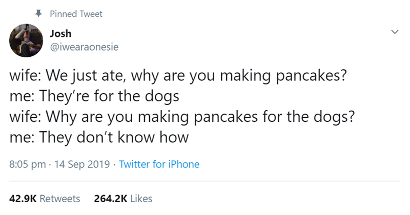 Text - Pinned Tweet Josh @iwearaonesie wife: We just ate, why are you making pancakes? me: They're for the dogs wife: Why are you making pancakes for the dogs? me: They don't know how 8:05 pm 14 Sep 2019 Twitter for iPhone 42.9K Retweets 264.2K Likes