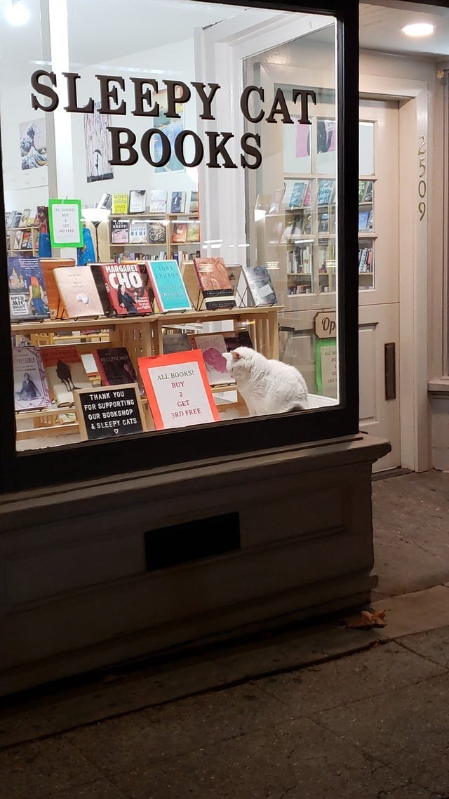 Bookselling - SLEEPY CAT BOOKS BLUE MARGARET NOKA CHO trau ECUPIONT ALL ALL BOOKS! BUY THANK YOU FOR SUPPORTING QUR BOOKSHOP 2 GET 3RD FREE & SLEEPY CATS