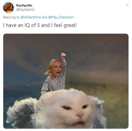 Cat - RayApollo @RayApollo Replying to@Volkerstime and @Play Champion I have an IQ of 5 and I feel great!