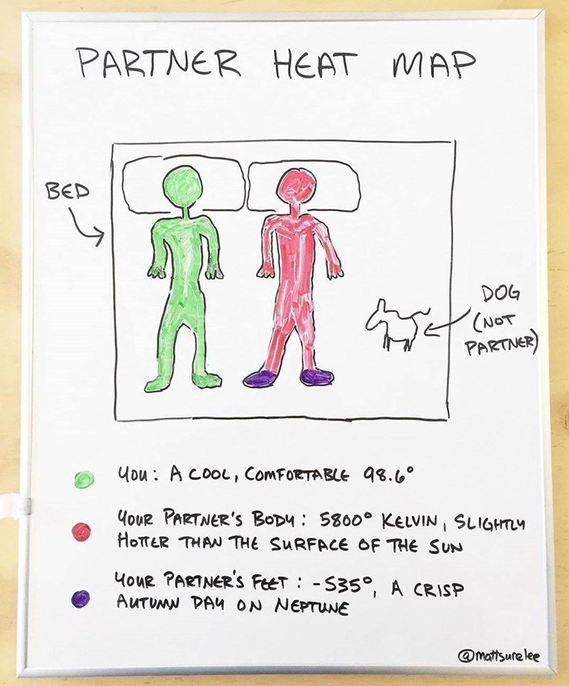 Text - Text - PARTNER HEAT MAP BED DOG CANOT PARTNER ou A cooL, ComFoRTABLE 98.6 HoUR PARTNER'S BoDy 5800 KELVIN, SLIGHTM HOTTER THAN THE SURFACE OF THE SUN 4ouR PARTNER'S FeeT -S35, A CRISP AUTUMN DAY ON NEPTUNE @mattsure lee