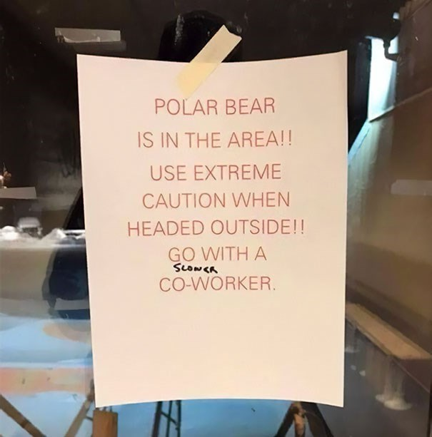 Text - POLAR BEAR IS IN THE AREA!! USE EXTREME CAUTION WHEN HEADED OUTSIDE!! GO WITH A SLONCA CO-WORKER.