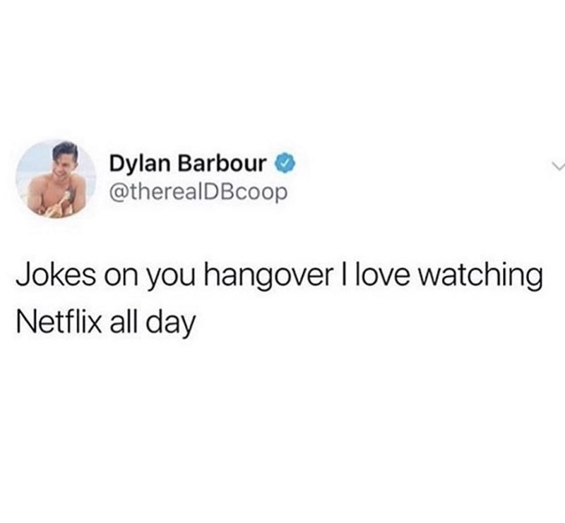 Text - Dylan Barbour @therealDBcoop Jokes on you hangover I love watching Netflix all day