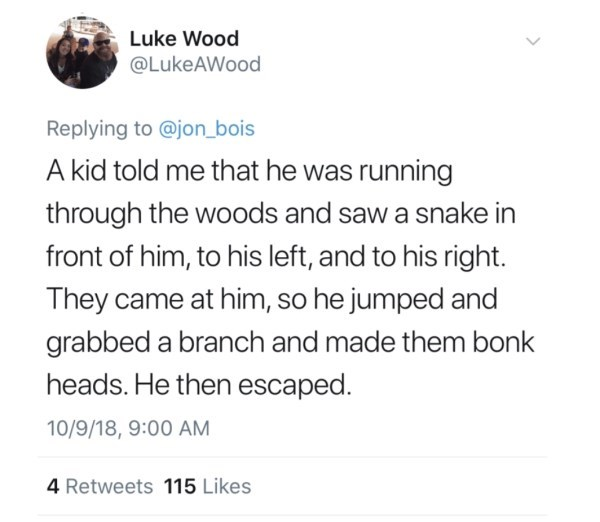 Text - Luke Wood @LukeAWood Replying to @jon_bois A kid told me that he was running through the woods and saw a snake in front of him, to his left, and to his right. They came at him, so he jumped and grabbed a branch and made them bonk heads. He then escaped. 10/9/18, 9:00 AM 4 Retweets 115 Likes >