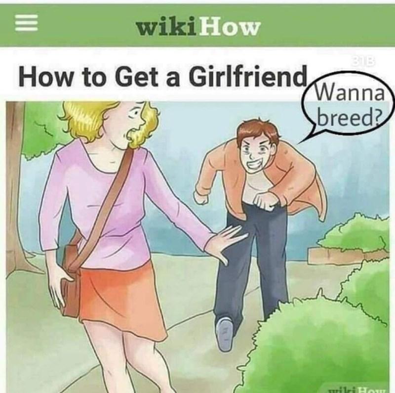 Cartoon - wiki How 31B How to Get a Girlfriend, Wanna breed? Turilri HoI II