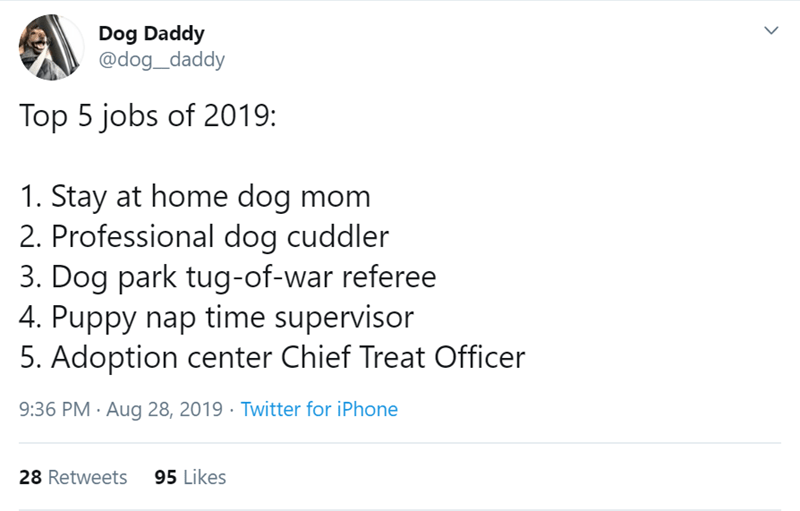 Text - Dog Daddy @dog_daddy Top 5 jobs of 2019: 1. Stay at home dog mom 2. Professional dog cuddler 3. Dog park tug-of-war referee 4. Puppy nap time supervisor 5. Adoption center Chief Treat Officer 9:36 PM Aug 28, 2019 Twitter for iPhone 95 Likes 28 Retweets