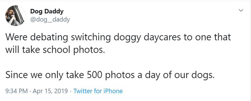 Text - Dog Daddy @dog_daddy Were debating switching doggy daycares to one that will take school photos. Since we only take 500 photos a day of our dogs. 9:34 PM Apr 15, 2019 Twitter for iPhone