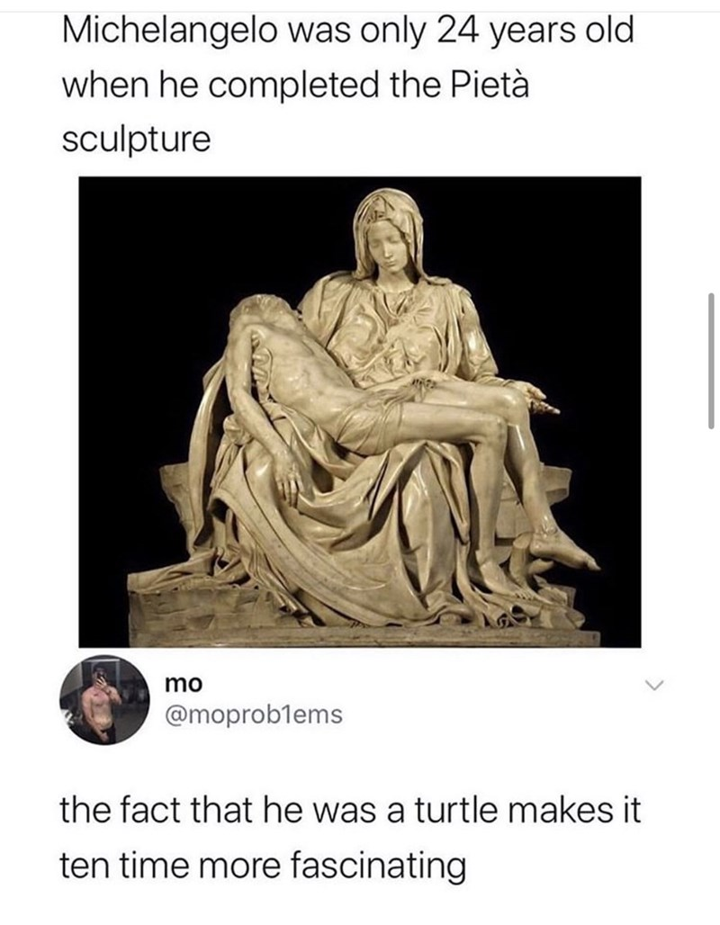 Text - Michelangelo was only 24 years old when he completed the Pietà sculpture mo @moproblems the fact that he was a turtle makes it ten time more fascinating