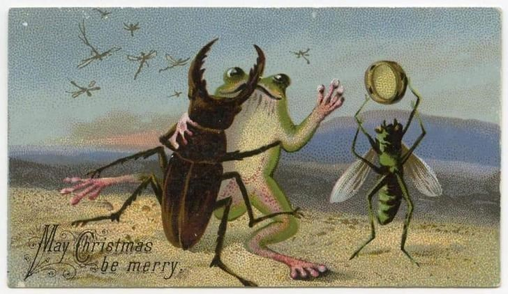 Illustration - Insect - be merry