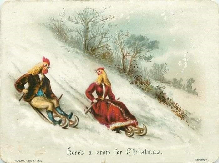 Sled - bere's a erom for Christmas corm HAPLALL TUGK 3