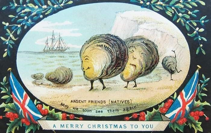 Sea snail - ARSENT FRIENDS (NATIVES May we Soon See them again A MERRY CHRISTMAS TO YOU