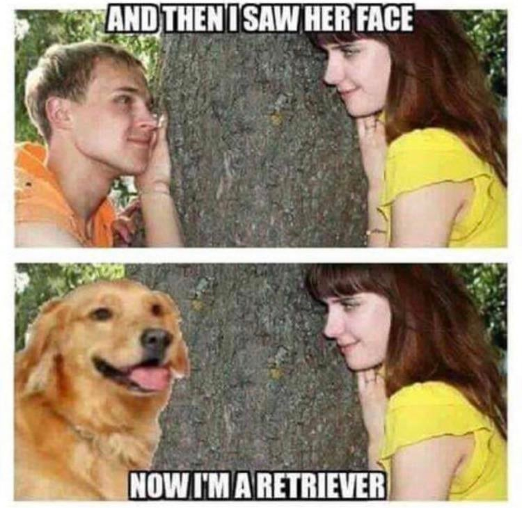 Face - AND THENISAW HER FACE NOW I'M A RETRIEVER