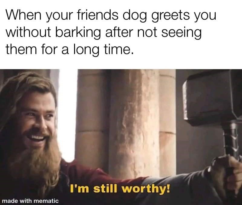 Text - When your friends dog greets you without barking after not seeing them for a long time. I'm still worthy! made with mematic