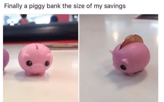 Pink - Finally a piggy bank the size of my savings