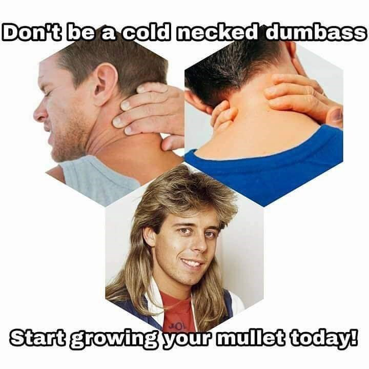 Face - Don't be a cold necked dumbass Start growing your mullet today!