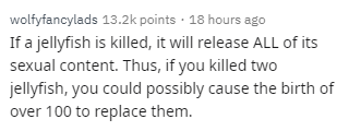 Text - wolfyfancylads 13.2k points 18 hours ago If a jellyfish is killed, it will release ALL of its sexual content. Thus, if you killed two jellyfish, you could possibly cause the birth of over 100 to replace them.
