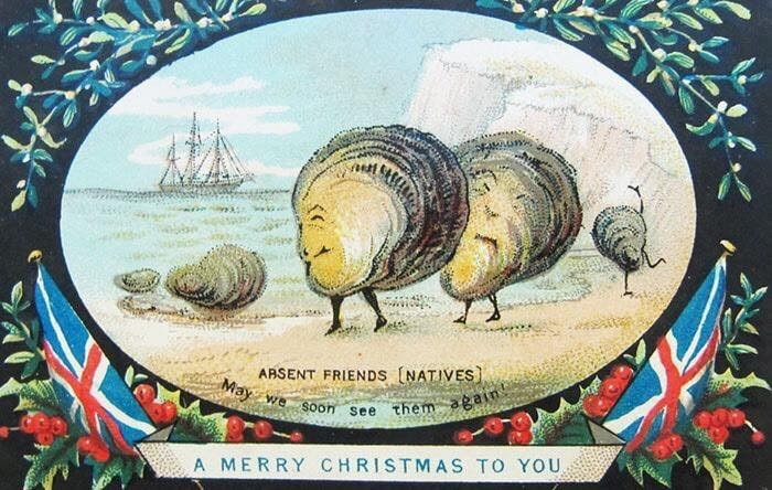 Sea snail - ARSENT FRIENDS (NATIVES) May we Soon See them again A MERRY CHRISTMAS TO YOU