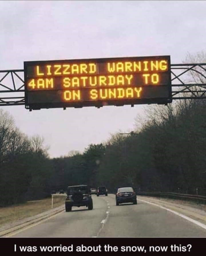 Lane - LIZZARD WARNING 4AM SATURDAY TO ON SUNDAY I was worried about the snow, now this?