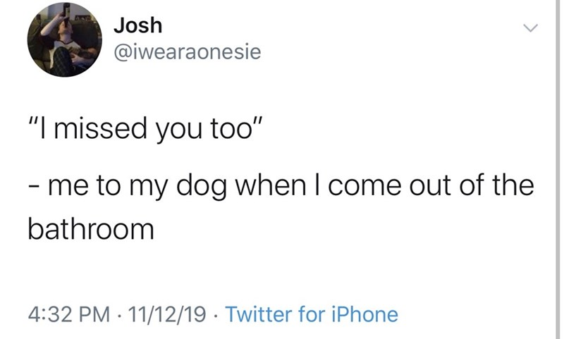 "Text - Josh @iwearaonesie ""I missed you too"" - me to my dog when I come out of the bathroom 4:32 PM 11/12/19 Twitter for iPhone"