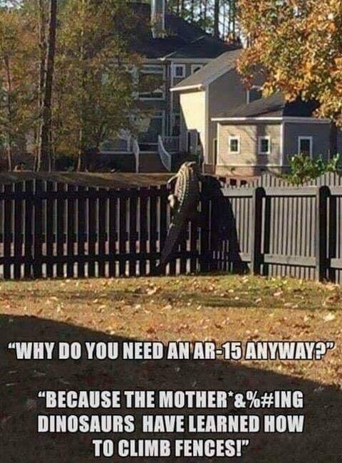 """Fence - """"WHY DO YOU NEED AN AR-15 ANYWAY? """"BECAUSE THE MOTHER &%# ING DINOSAURS HAVE LEARNED HOW TO CLIMB FENCES!"""""""