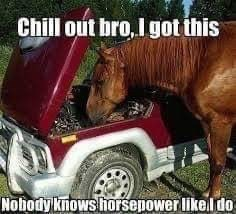 Vehicle - Chill out bro, I got this Nobody knows horsepower likel do