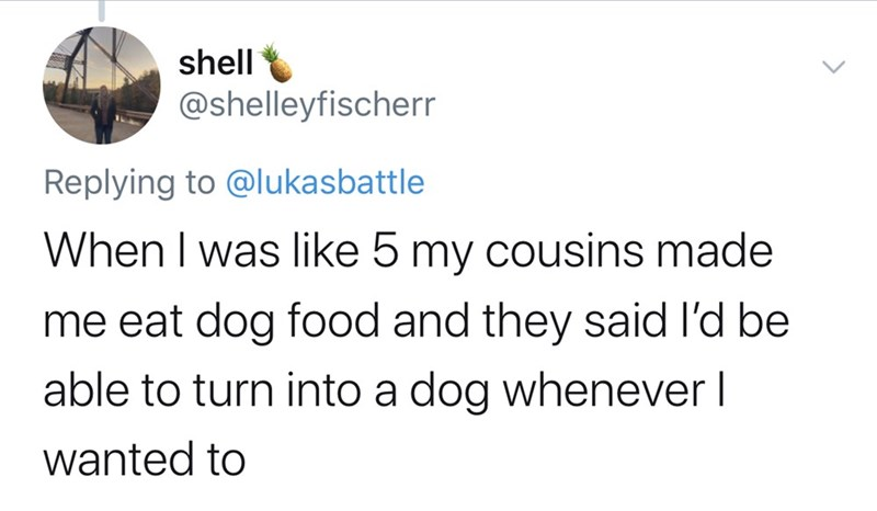 Text - shell @shelleyfischerr Replying to @lukasbattle When I was like 5 my cousins made me eat dog food and they said I'd be able to turn into a dog whenever I wanted to