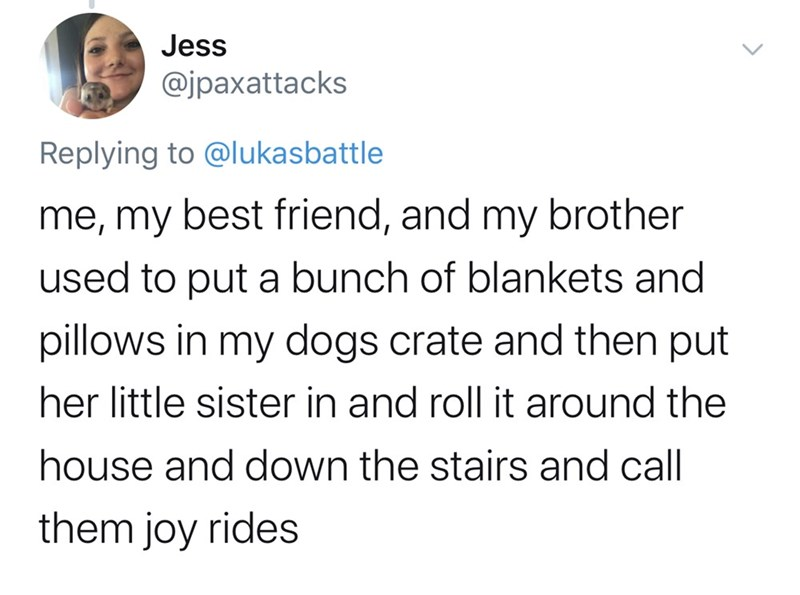 Text - Jess @jpaxattacks Replying to @lukasbattle me, my best friend, and my brother used to put a bunch of blankets and pillows in my dogs crate and then put her little sister in and roll it around the house and down the stairs and call them joy rides