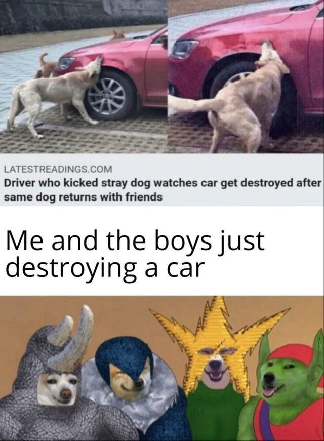 Motor vehicle - LATESTREADINGS.COM Driver who kicked stray dog watches car get destroyed after same dog returns with friends Me and the boys just destroying a car