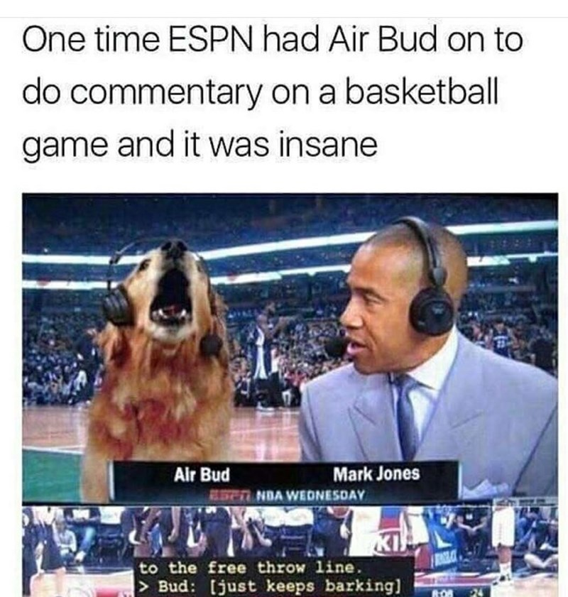 News - One time ESPN had Air Bud on to do commentary on a basketball game and it was insane Air Bud Mark Jones RSNDA WEDNESDAY KI to the free throw line > Bud: [just keeps barking 808 24