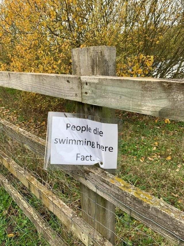 Leaf - People die swimming here Fact.