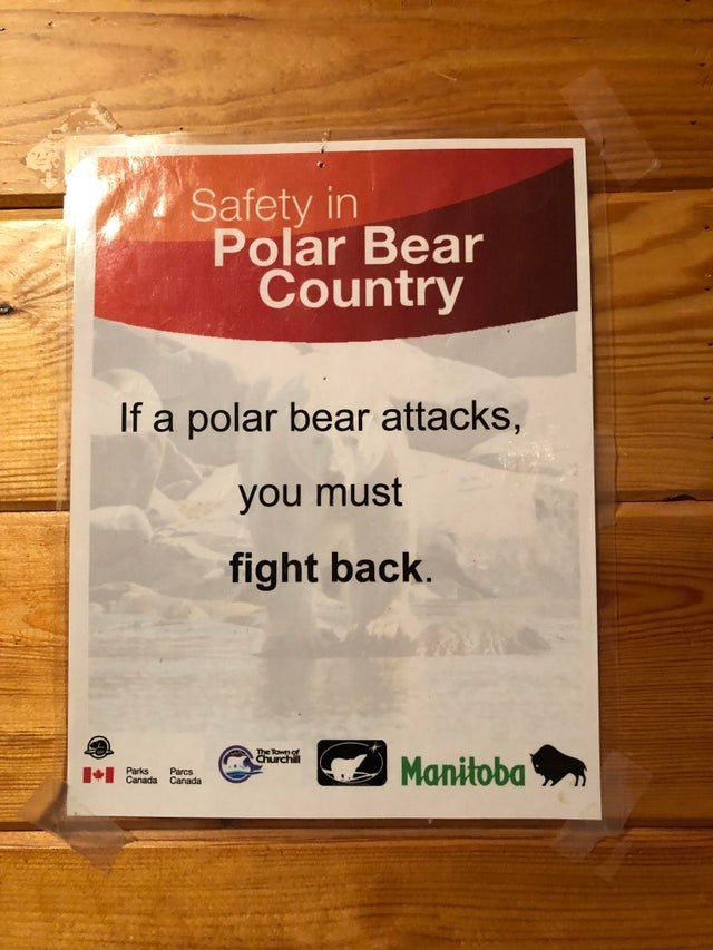 Text - Safety in Polar Bear Country If a polar bear attacks, you must fight back. The Town of Churchill Manitoba Parks Canada Canada Parcs