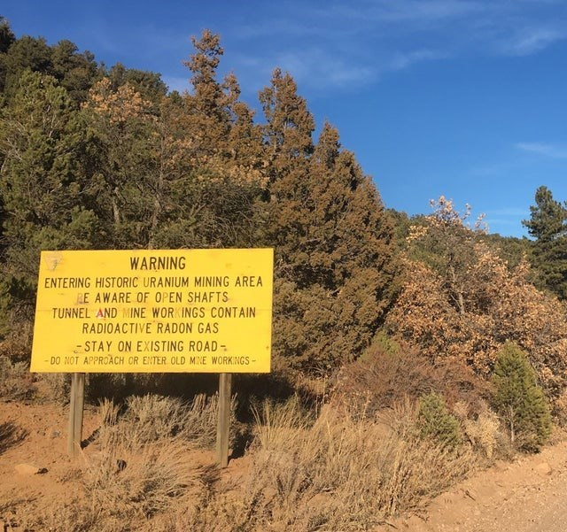 Vegetation - WARNING ENTERING HISTORIC URANIUM MINING AREA RE AWARE OF OPEN SHAFTS TUNNEL AND MINE WORKINGS CONTAIN RADIOACTIVE RADON GAS -STAY ON EXISTING ROAD DO NOT APPROACH OR ENTER OLD MINE WORKINGS