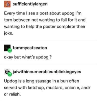 Text - sufficientlylargen Every time I see a post about updog lI'm torn between not wanting to fall for it and wanting to help the poster complete their joke. tommyeatseaton okay but what's updog? jaiwithinnumerableunblinkingeyes Updog is a long sausage in a bun often served with ketchup, mustard, onion e, and/ or relish