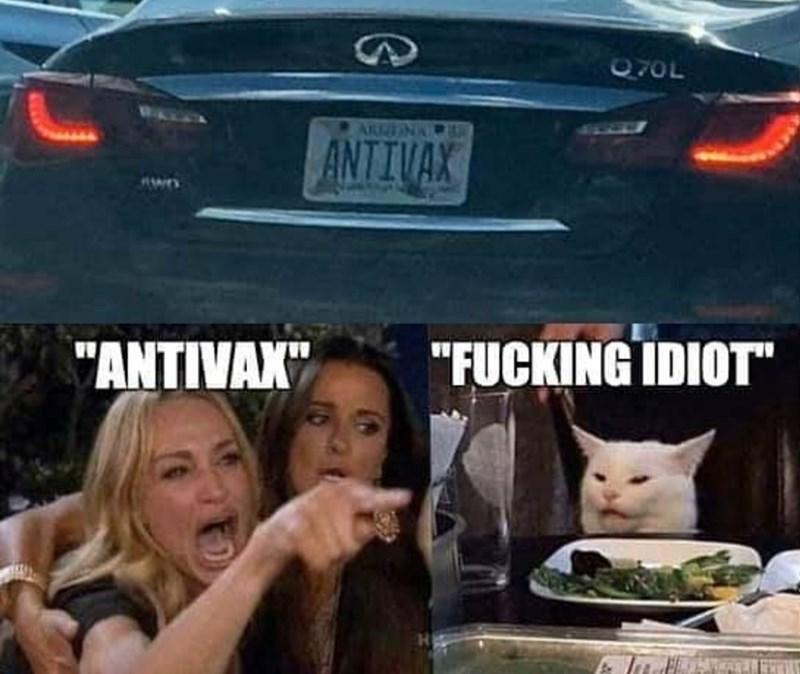 "Vehicle - 70L ANTIVAX ""FUCKING IDIOT ""ANTIVAX"""