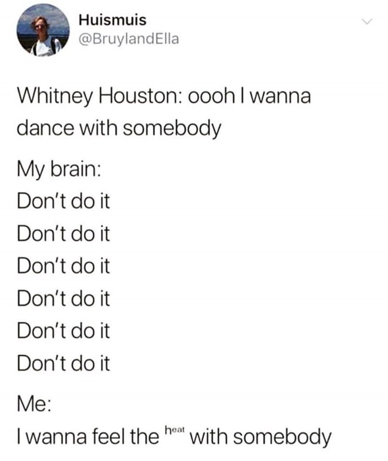 Text - Huismuis @BruylandElla Whitney Houston: 00oh I wanna dance with somebody My brain Don't do it Don't do it Don't do it Don't do it Don't do it Don't do it Me: heat with somebody Iwanna feel the