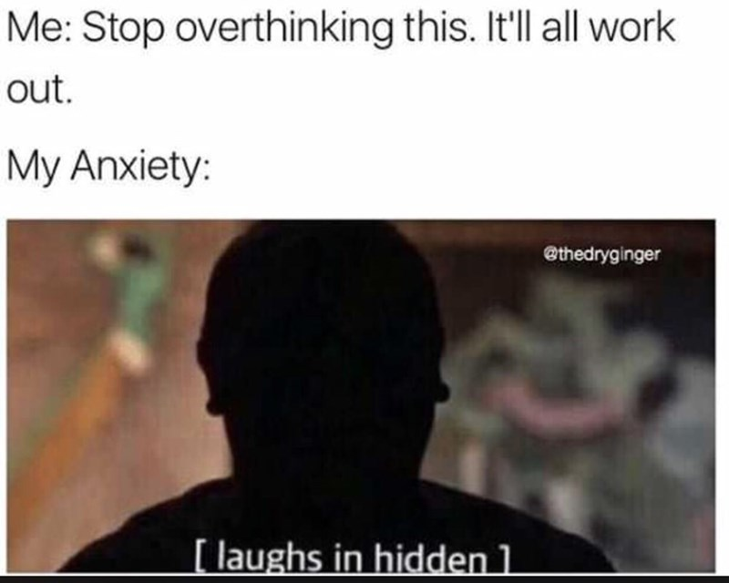 Text - Me: Stop overthinking this. It'll all work out My Anxiety: @thedryginger [ laughs in hidden1